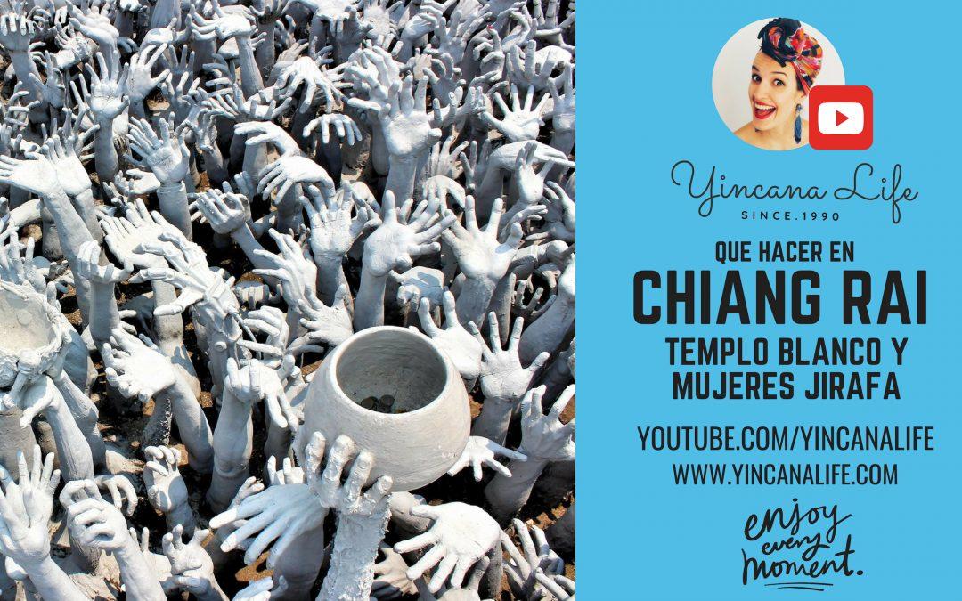 Que hacer en Chiang Rai, templo blanco y mujeres jirafa