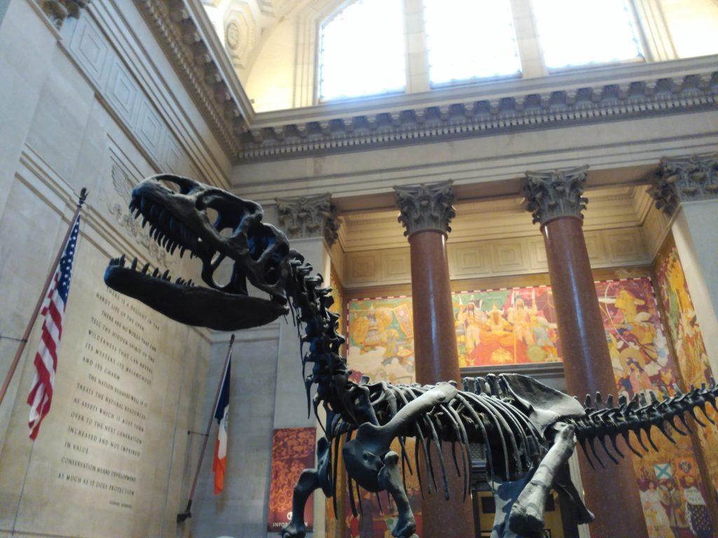 que visitar en nueva york en navidad 2019 museo de historia natural