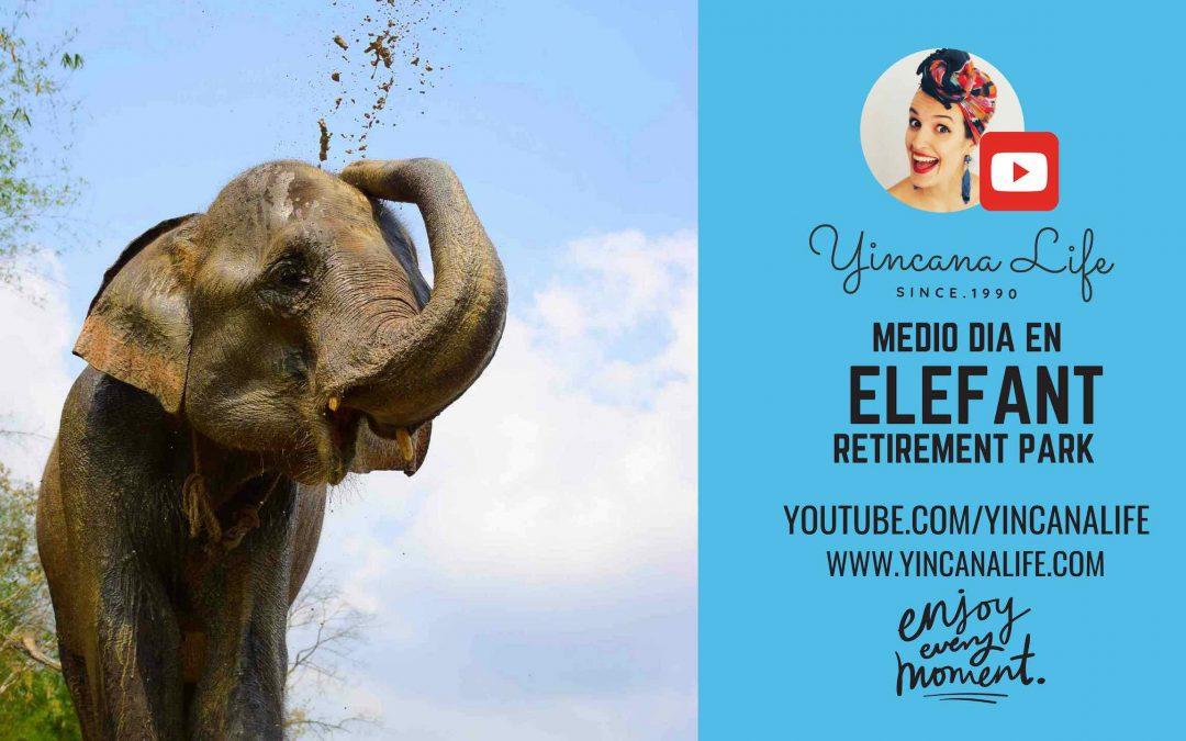 Que santuario de elefantes visitar en chiang mai