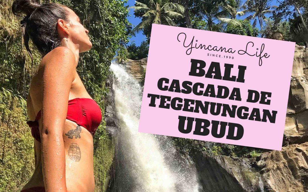 Cascada de Tegenungan Bali 2020