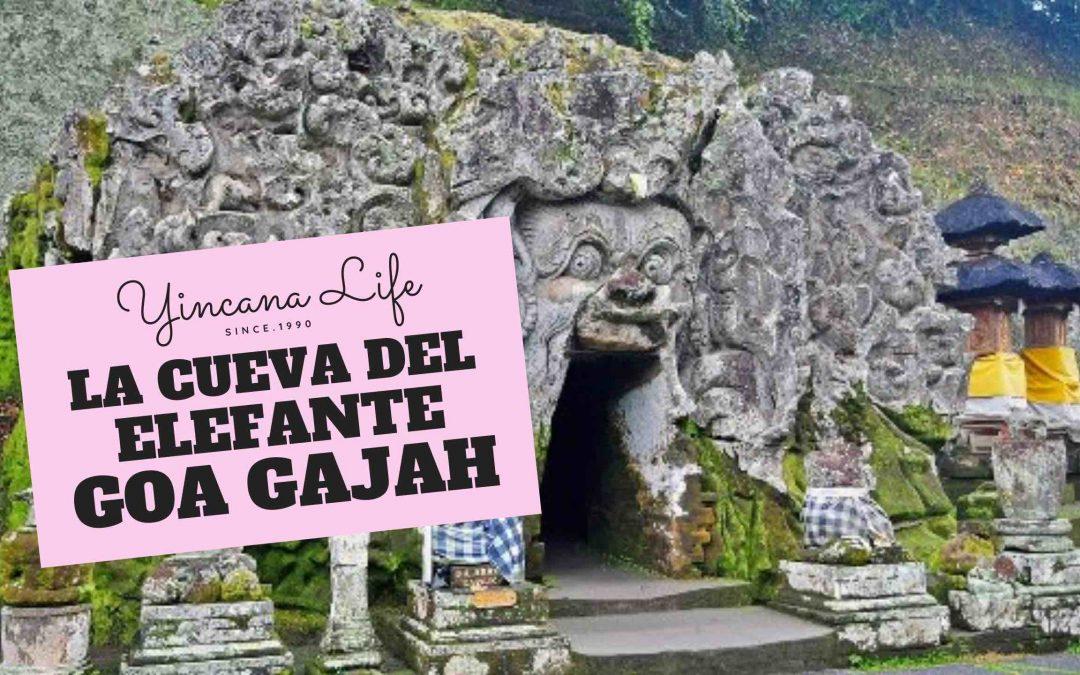 La cueva del elefante que hacer en ubud 2020